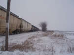 IC&E Grain Train