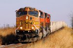 BNSF Rock on UP
