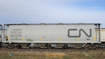 CNIS 376034 Covered Hopper