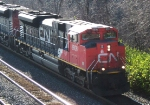 CN 8806