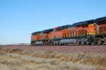 BNSF 6648 passes me by being led by BNSF 7206.