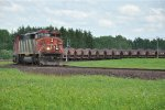 CN 5548