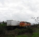 BNSF 145 on the North Bay Local