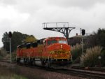 BNSF 116 on the North Bay Local