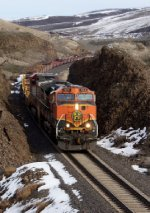 BNSF 982 leads a Baretable train West.