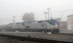 AMTK 56 & 130 lead train P092 northbound in a heavy fog