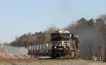 NS 8015 leads train 218 southbound