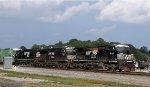 NS 8367 leads train 348