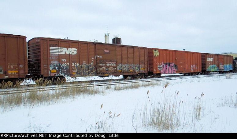 NS 407209