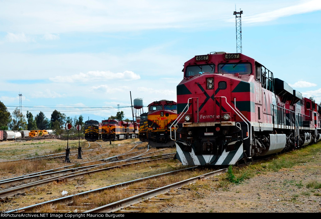 FXE and KCSM Locomotives at Ferrovalle yard