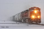 Northbound BNSF Mixed Freight Train