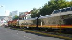 Southern Belle at Polanco