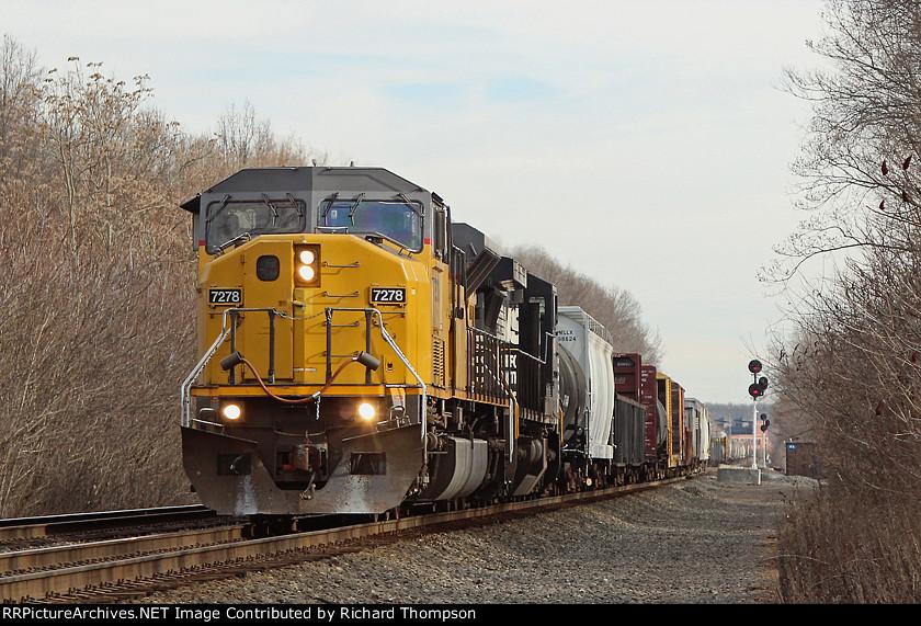 NS 7278 on NS 11V