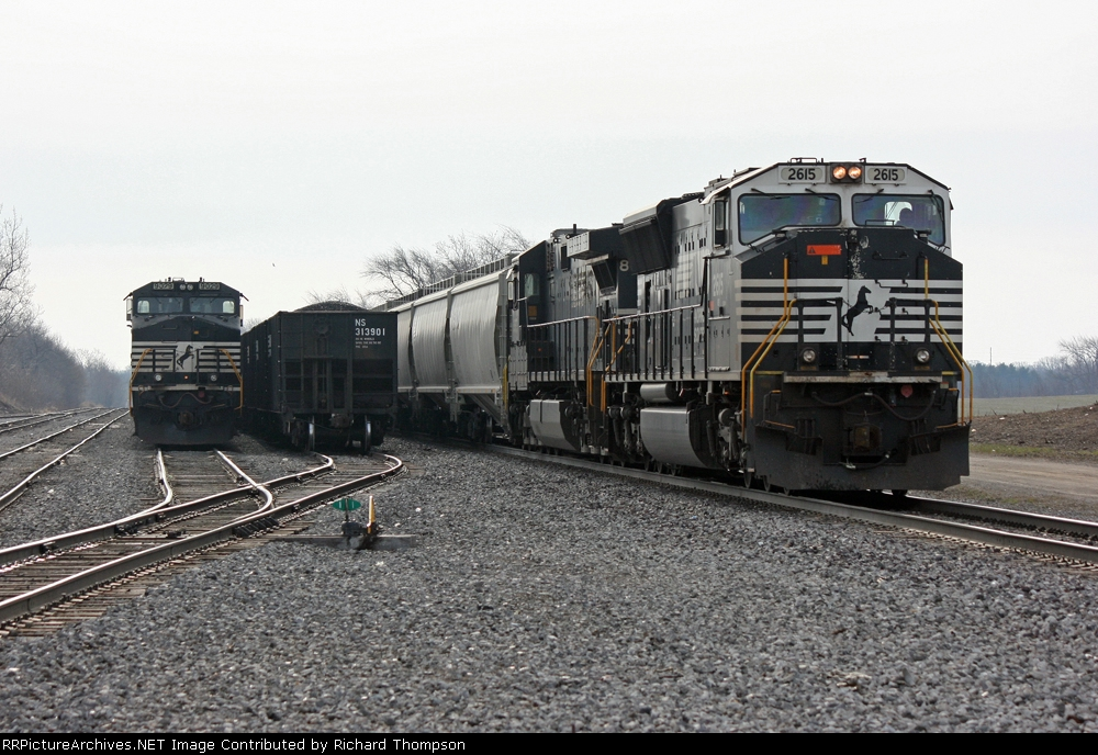 NS 2615 on NS 51Z and NS 9029 on NS 15Q