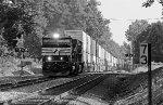 NS 6946 on NS 21Q