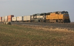 UP 4101 on NS 217