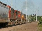 NS 9523 on NS 66Q