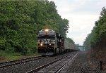 NS 8133 on NS 262