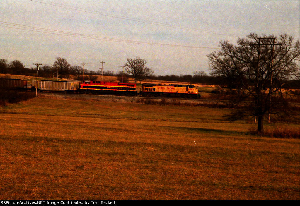 Passing the pasture
