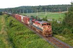 CN 309 with BCOL 4619 leader and 2163 second unit