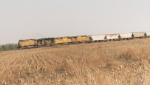 UP Grain Train