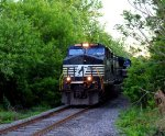 Norfolk Southern
