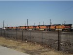 Lineup of BNSF locos