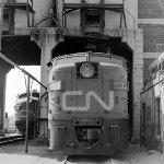 CN 6786