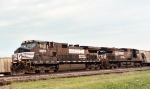 NS 9078 & NS 8976