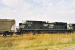 NS 2714 the other half of the pair of Black Stallions on the Plains of Kansas