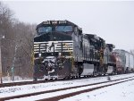 NS #9568 In The Snow