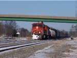 Snowy CN #2696