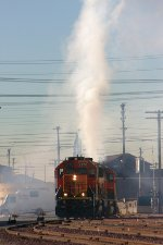 Old Faithful or the Malabar Switcher?