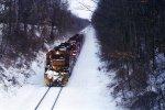 Salt train