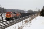 Empty Eastbound BNSF Coal