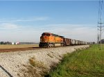 BNSF Headed South