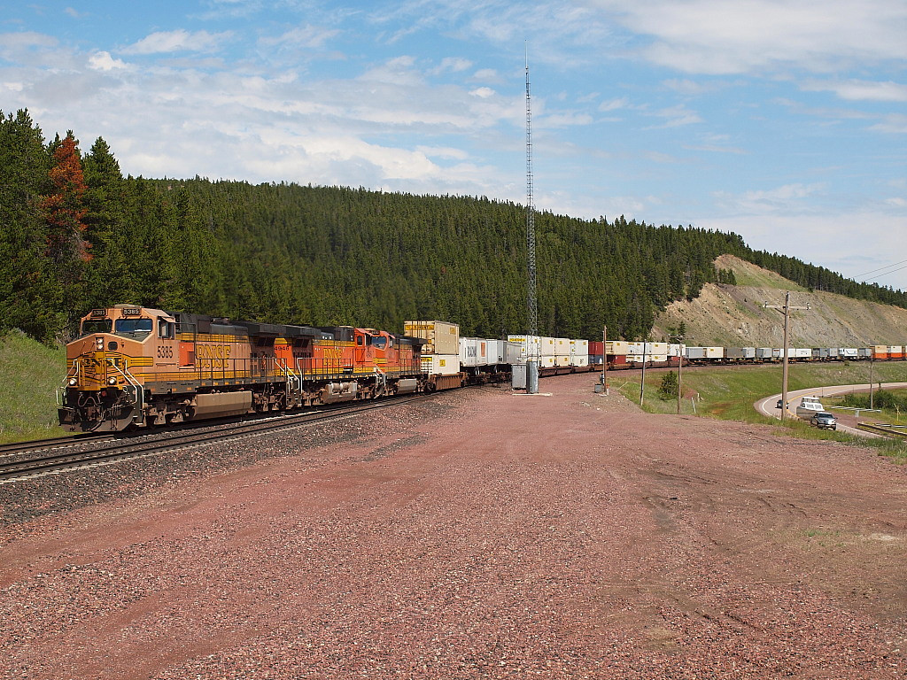 WB Z Train