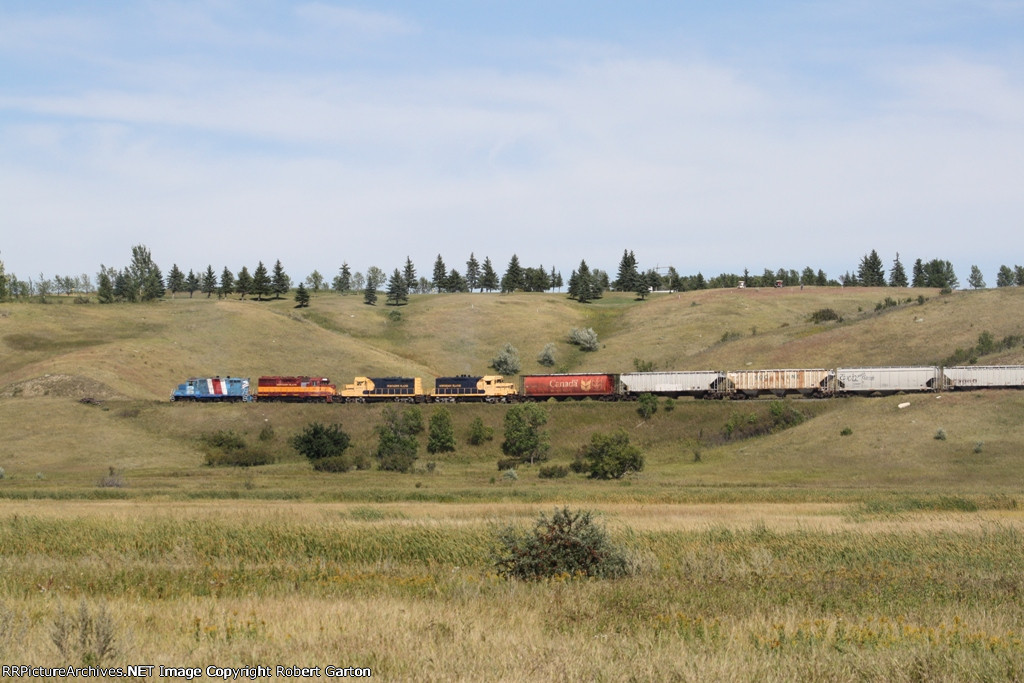 Mix of Northern Plains Railroad Power Pulling Grain Hoppers