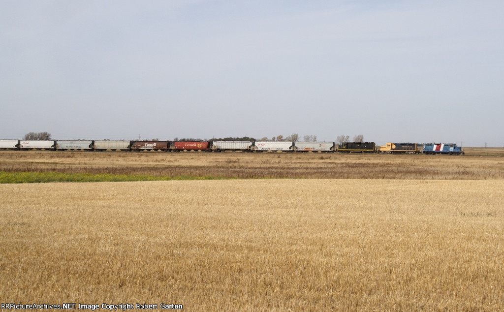 Eastbound Grain Empties on the Northern Plains RR's Wheat Line