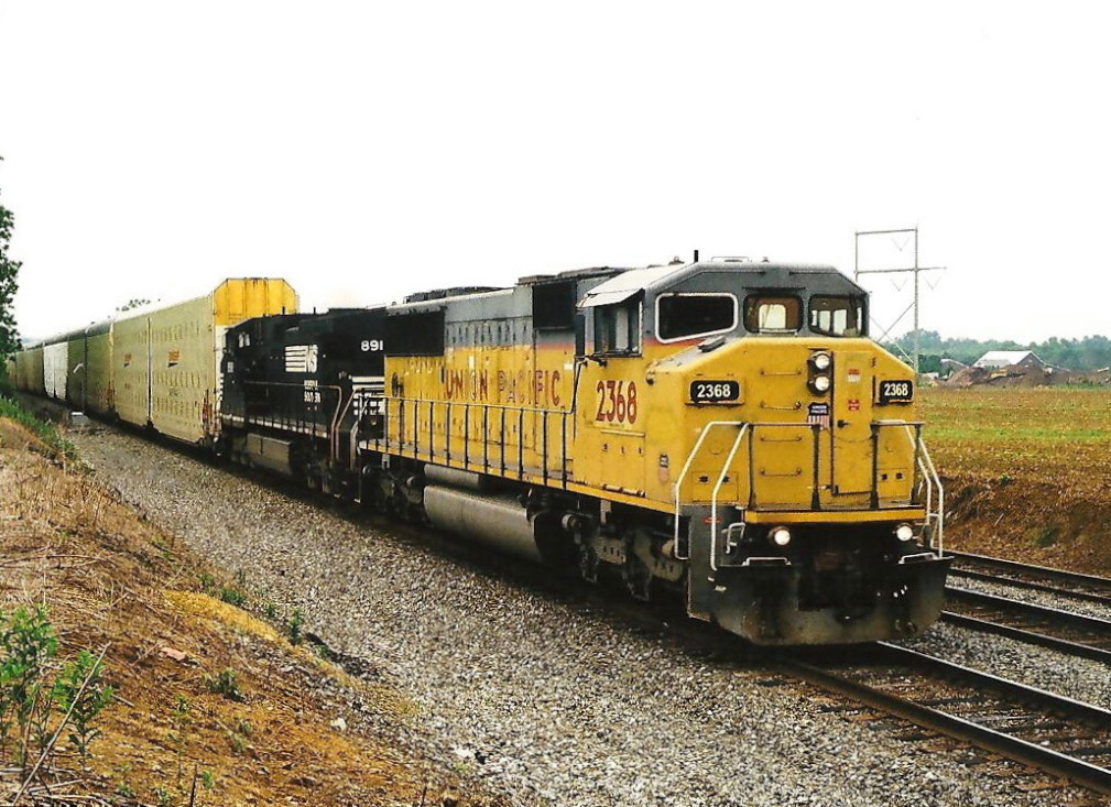 NS 290