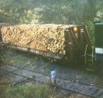 Southern Railway pulpwood load