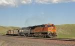 BNSF 5753