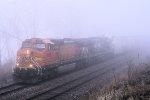 Eastbound BNSF Freight Thru the Fog
