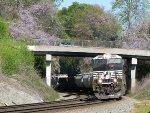 NS 7625 leading train 361