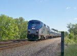 Amtrak at Staats Island Rd