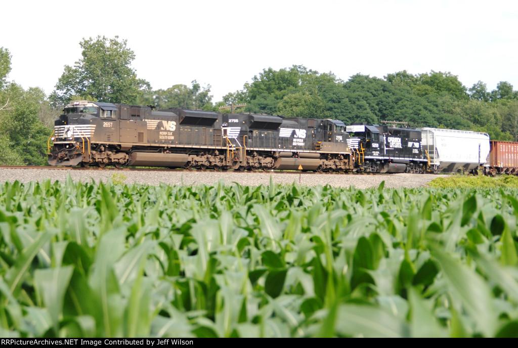 H88 rambling west across an Owego cornfield
