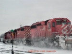 CP 5915