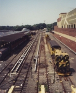 Corona Yard