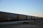 ETTX CSX Autoracks at Ford Hermosillo's yard