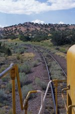 Green desert railroading